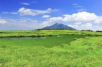 群馬県 尾瀬 アヤメ平から望む燧ヶ岳