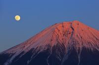 静岡県 夕日に染まる富士山と昇る月