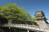 長野県 高島城