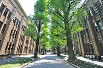 東京都 東京大学 法文2号館と法学部3号館