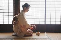 茶道をする着物の日本人女性