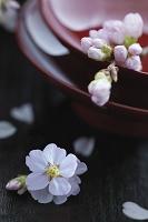 盃と桜の花