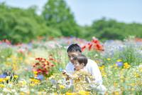 虫眼鏡で花を観察する日本人親子