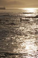 北海道 拾い昆布漁の朝