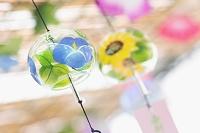 東京 風鈴祭り