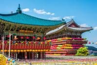 韓国 三光寺 提灯祭り