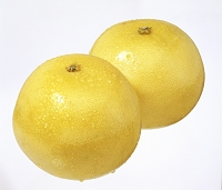 水滴のついたグレープフルーツ2個