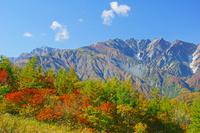 長野県 岩岳から五竜岳(左)と唐松岳(中央)