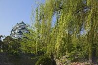 愛知県 名古屋城天守閣