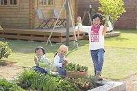 家庭菜園で収穫した野菜を持つきょうだい