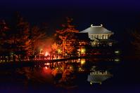 奈良県 奈良市 東大寺 大仏殿 夜景