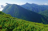 長野県 駒津峰からアサヨ峰左と北岳中央の山