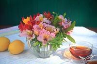 アリストメリアの花