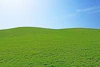 北海道 若草の丘と空