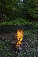 北海道 焚き火