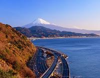 静岡県・静岡市 駿河湾と富士山(朝)