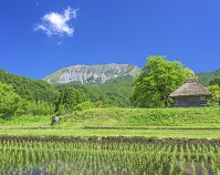 鳥取県 御机の茅葺き小屋と大山