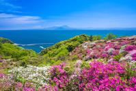島根県 松江市 関の五本松公園から見る大山(鳥取県)