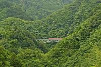 静岡県 川根本町 接岨峡 (関の沢鉄橋)