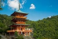 熊野古道 五重塔