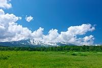 桑ノ木台湿原と鳥海山