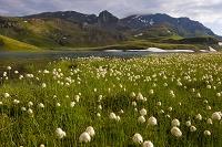 イタリア グランパラディーゾ国立公園