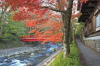 静岡県 紅葉の修善寺温泉街