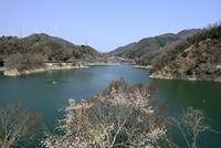 一庫ダム知明湖の風景
