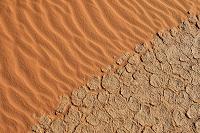 アルジェリア 砂漠