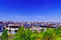 北海道 新緑の木々と住宅地の家並み