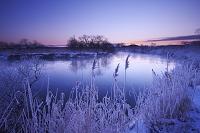 北海道 釧路川の朝と樹氷