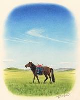 モンゴル・モンゴル馬の種馬