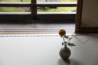 縁側近くの畳の上の花瓶