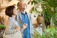 花屋で観葉植物を見る日本人シニア夫婦