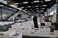 北海道 函館魚市場