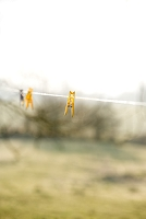 黄色の洗濯バサミ