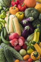 夏野菜集合