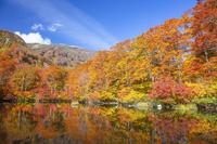山形県 秋の鶴間池と鳥海山