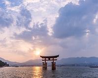 広島県 厳島神社の大鳥居 夕景