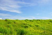 阿蘇の草原 青空