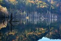 長野県 自然湖