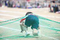 体育祭の障害物競走