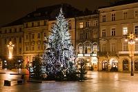 中央市場広場のクリスマスツリー/夜景