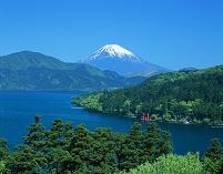 神奈川県 元箱根 新緑の芦ノ湖と富士山