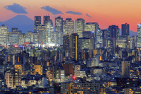 東京都 文京シビックセンターより富士山と新宿ビル群 夜景