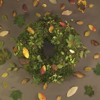 秋の草木を用いたリース飾り