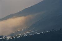 中国 雲南 霧の棚田