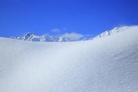 長野県 雪の北アルプス五竜岳