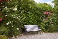 庭園のベンチ