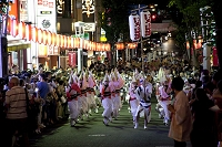 東京都 神楽坂の阿波踊り